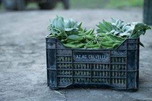 Una cassetta di fave