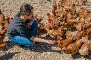 Claudia in mezzo alle sue galline allevate a terra