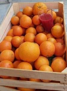 Arance siciliane fresche
